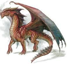 european dragon - Google Search