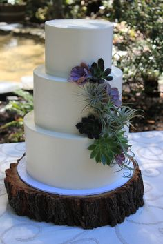 Instead of traditional flowers, succulent and air plants decorate this cake.
