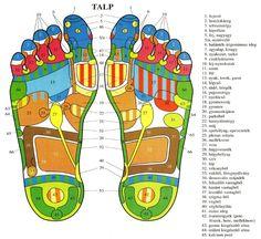 Talptérkép Health Fitness, Spa, Album, Budapest, Garden, Garten, Health And Fitness, Lawn And Garden, Tuin