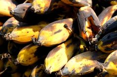 Stop throwing out banana peels. Here are 8 effective ways to use them in the garden Vegetable Prep, Vegetable Garden Design, Gardening For Beginners, Gardening Tips, Banana Peel Uses, Acid Loving Plants, Dried Bananas, Soil Improvement, Natural Garden