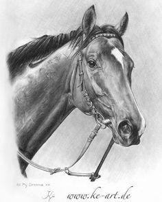 All My Dreams (German Derby winner)xx  #horsedrawing #horse #pferd #pferdeportrait #hengst #stallion #vollblut #englischesvollblut #thoroughbred #allmydreams #galopper #pencildrawing #bleistiftzeichnung #derby #portrait #horseart #art #kunst #galoppderby #hamburg #hornerrennbahn #horseracing #sport