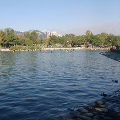 Piscina Parque de Los Reyes