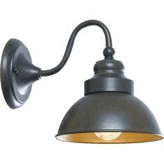 Found it at Wayfair - Dark Sky 1 Light Outdoor Barn Light