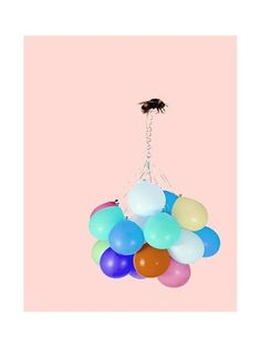 Balloon and Bumblebee