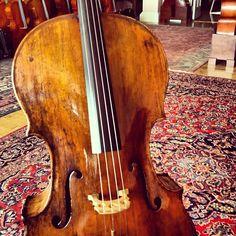 Grancino Cello 1718! Instagram