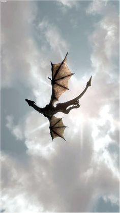 Drogon ~ Game of Thrones