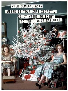 """Dump A Day - Funny Pictures Of The Day - When someone asks """"Where is your Xmas Spirit"""", is it wrong to  point to the liquor cabinet?"""