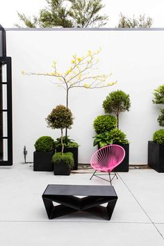 courtyard styling | pink chair, black low table, plantings | desire to inspire