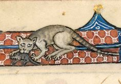 Cat and mouse (f°13r) -- «The Luttrell Psalter», Lincolnshire (England), c. 1325-1340 [BL Ms Add 42130]