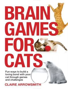Review: Brain Games for Cats