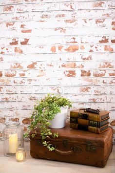 Create that indoor outdoor feel to your interiors with this beautiful brick wallpaper design. The rough and ready look of the white paint adds another layer to this texture wallpaper design. Combine with vintage furnishings for a quaint setting.