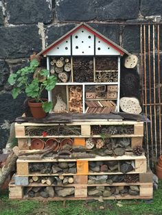We used this old dolls house to finish off our bug hotel.