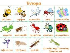 Spring Activities, Learning Activities, Clipart Png, Learn Greek, Insect Crafts, Greek Language, Greek Alphabet, Preschool Education, Daycare Crafts