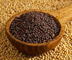 Health Tip: Mustard seeds help control symptoms of asthma help you lose weight - kellyakers. - - Health Tip: Mustard seeds help control symptoms of asthma help you lose weight – kellyakers. Mustard Plant, Mustard Oil, Mustard Seed, Honey Mustard Recipes, Honey Mustard Sauce, Bento, Asthma Symptoms, World Recipes, Oils For Skin