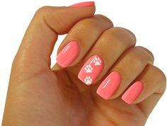 Cute puppy paws nails