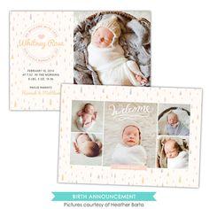 newborns | Photoshop templates for photographers by Birdesign