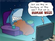 Sharks watching Human Week.  think it's clear which of the two species is more dangerous.