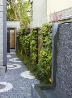 Профессиональное оформление садового участка с каменными дорожками.