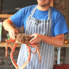 Spider crab at Poco Crab Legs Recipe, Crab Spider, How To Cook Liver, Crab Recipes, Afternoon Tea, Cooking, Kitchen, Brewing