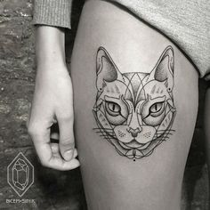 Gorgeous geometrical cat with so many details; stunning.