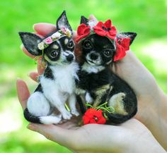 Brooch Chihuahua/Felted Miniature Animal by UkrainianHouseofArt