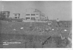 1936- Baťův kanál Outdoor, Historia, Outdoors, Outdoor Living, Garden