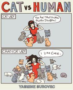 Cat V Human
