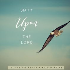 Spiritual Warfare Tactic 45 ••Wait Upon the Lord•• When you want a prophetic perspective - God's perspective - on anything from your daily… Wait Upon The Lord, Spiritual Warfare, Perspective, Waiting, Nerd, Spirituality, Bible, Instagram, Biblia