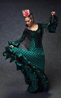 'Flamenco Descripción de la imagen'