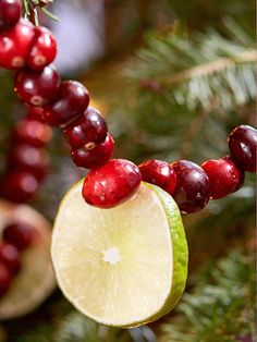 34 best Christmas Fruit Decorations images on Pinterest | Christmas ...