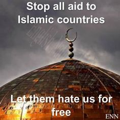 Conservative Musings: Islamic Countries Should Survive Without Foreign A. Moslem, Political Views, God Bless America, We The People, That Way, Wake Up, In This World, Obama, Let It Be