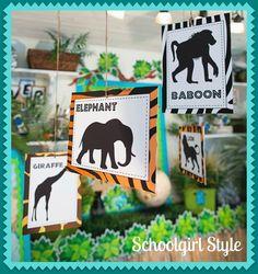 animal adventure theme classroom