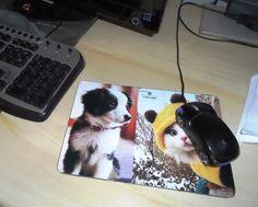 mousepad artesanal com foto de bichinhos