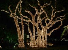 outdoor-christmas-decorations.gif 497×369 pixels