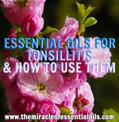 Got tonsillitis? Don't worry - there is a natural treatment for super fast relief: essential oils! Learn 7 of the best essential oils for tonsillitis and r