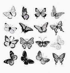 蝶のシルエットのイラストセット