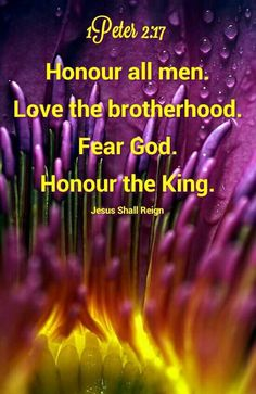 ❤*❤*❤ Jesus Reigns, Whatsoever Things Are True, Philippians 4 8, Thank You Lord, Think On, Inspirational Message, Bible, Messages, God
