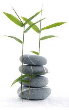 Sirina Thai Spa is one of the best Relaxing massage Centre in Alberton. We offer relaxation massage and Thai Spa and foot massage