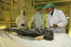Tutankhamun's Blood Why everyone from the Mormons to the Muslim Brotherhood is desperate for a piece of the Pharaoh Jo Marchant in Matter Mummification Process, Ancient World History, Egyptian Mummies, Muslim Brotherhood, Valley Of The Kings, Tutankhamun, Ancient Egypt, National Geographic, Archaeology