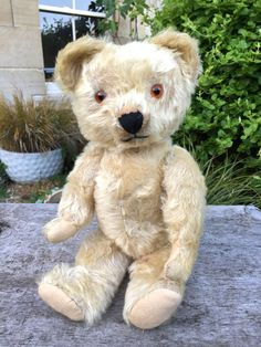 OLD VINTAGE ANTIQUE IRISH TARA SOFT GOLD MOHAIR TEDDY BEAR CIRCA 1950s  #Tara