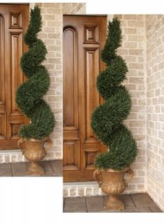 Set of Two Spiral Rosemary Topiaries (if u want me to choose one of two strange things - i can't do it. my wishes like my third unseeable hand. if u want me to choose smth - give me three variations. Topiary Decor, Topiary Garden, Topiary Trees, Decoration, Outdoor Topiary, Front Door Plants, Front Door Decor, Front Porch, Sunflower Home Decor