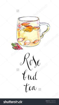 Cup of rose bud tea, hand drawn - watercolor Illustration-食品及饮料,物体-海洛创意(HelloRF)-Shutterstock中国独家合作伙伴-正版素材在线交易平台-站酷旗下品牌
