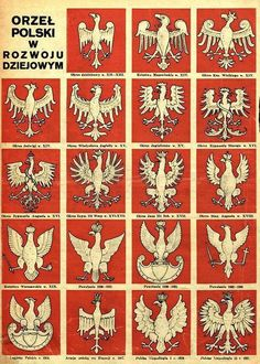 Evolution of the Polish Eagle's design from 12th century to the year 1927. The White Eagle (in Polish: Orzeł Biały) is the national coat of arms of Poland. It is a stylized white eagle with a golden beak and talons, and wearing a golden crown, in a red shield.