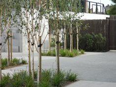 013 « Landscape Architecture Works | Landezine