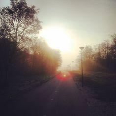 Dag 114;  a New Dawn