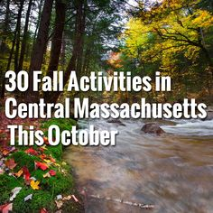 Fall is the season of festivals, apple picking, beautiful foliage, hay rides and fresh pumpkin pie. The warm days of summer may be officially behind us, but the Fall fun is just beginning! We've compiled the ultimate Fall guide toevents and attractions to check outthis October, 2014. There is something here for all ages and Read more...