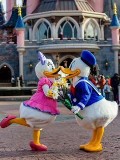 Cute Donald and Daisy!!!