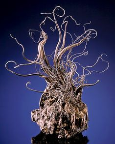 Native Wire Silver with Acanthite, From the Himmelsfürst Mine, Brand-Erbisdorf, Freiberg District, Erzgebirge, Saxony, Germany.  Measures 8 cm by 6.4 cm by 5 cm in total size.