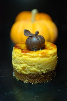 mini pumpkin chesecake brulee