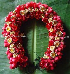 red rose petals veni